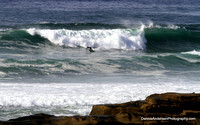 WINDANSEA SURF 12-01-12